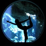 Aquarium Dancer