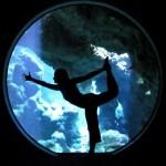 Aquarium Dancer