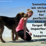 Sometimes we strive so hard for perfection that we forget that imperfection is happiness. - Karen Nave